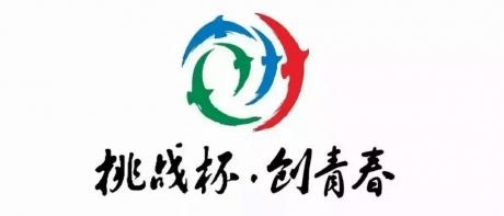 """第十二届""""挑战杯""""中国大学生创业附件下载"""